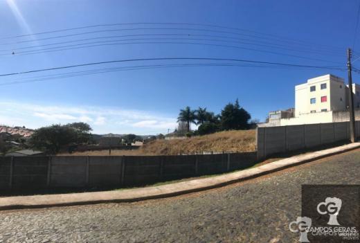 Terreno No Jardim Carvalho Com 660m2