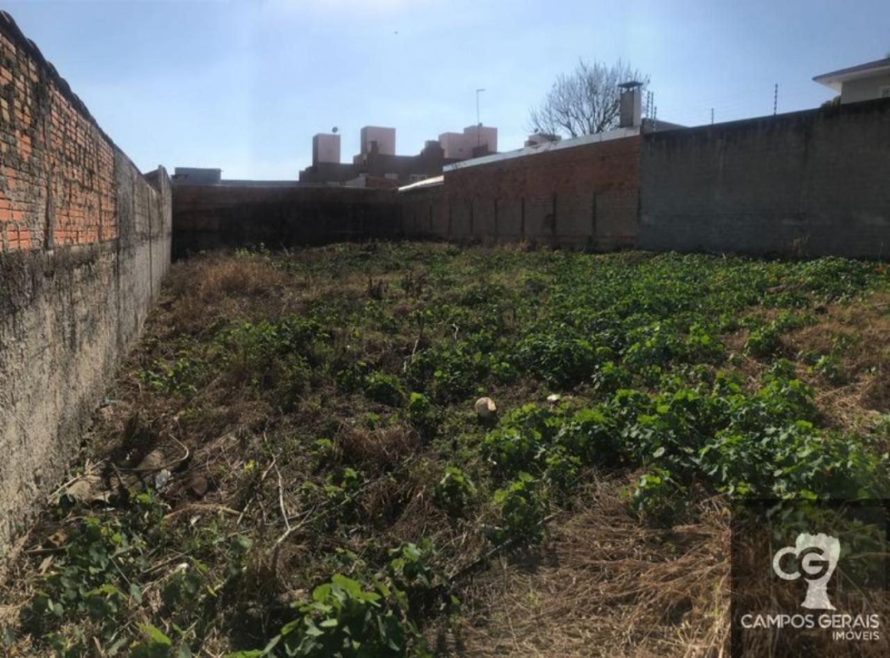 Terreno No Jardim Carvalho Com 495m²