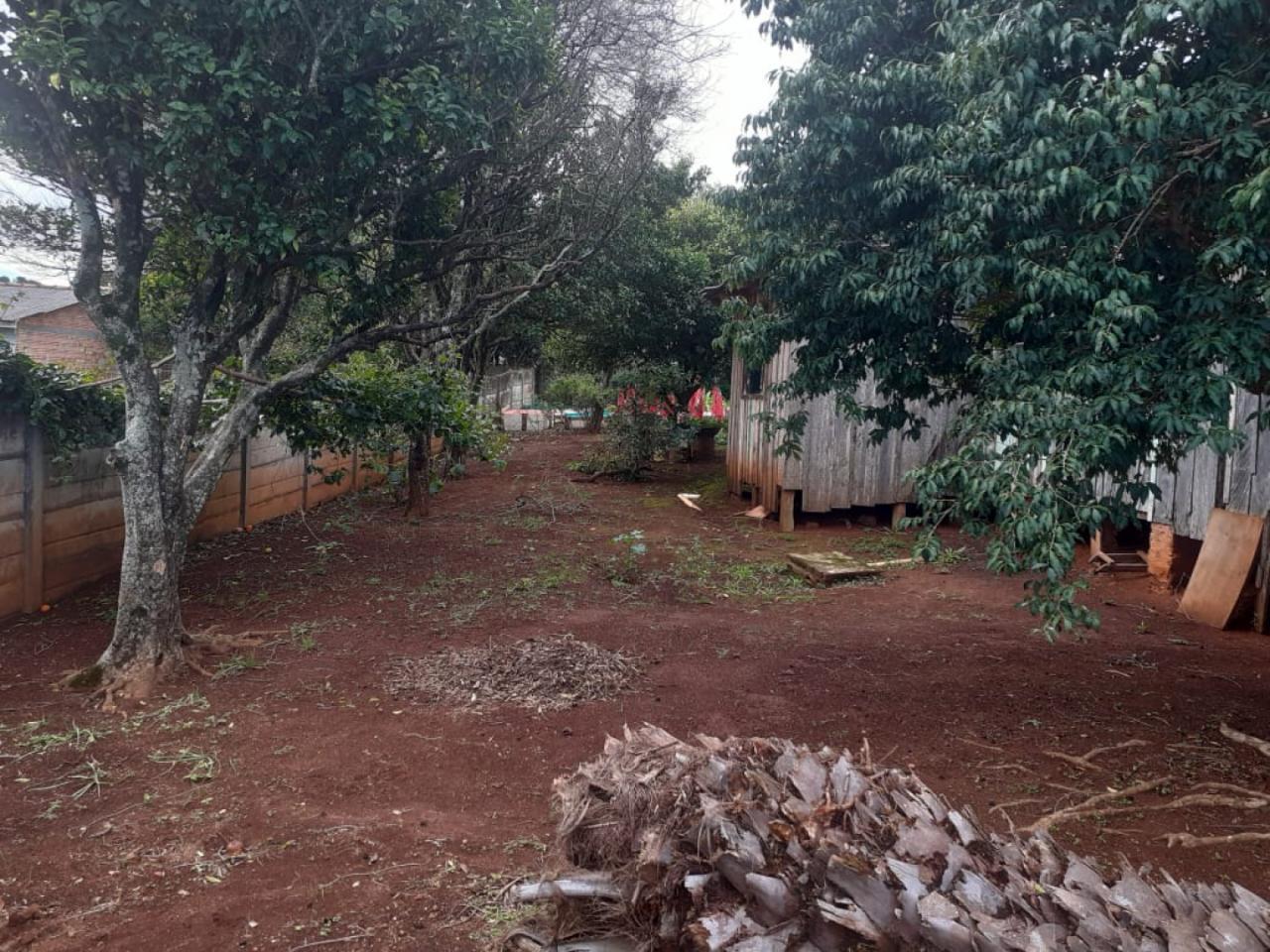 Terreno Em Uvaranas (jardim Progresso) 13x33m