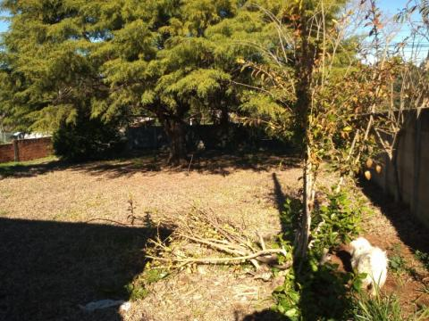 Terreno E Casa Mista Em Uvaranas