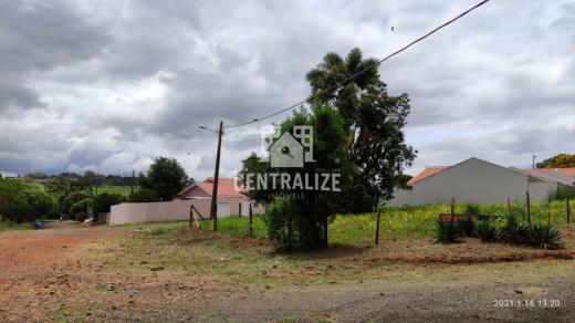 Terreno Para Venda Em Jardim Paraíso- Uvaranas