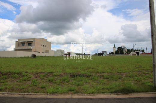 <strong>Terrenos para venda em Uvaranas.</strong>