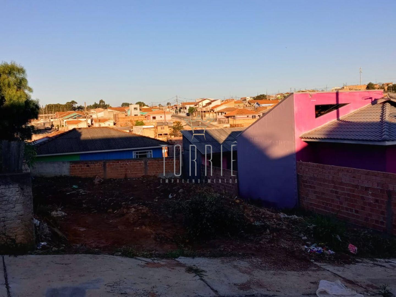 Terreno No Bairro São Miguel - Castro Pr