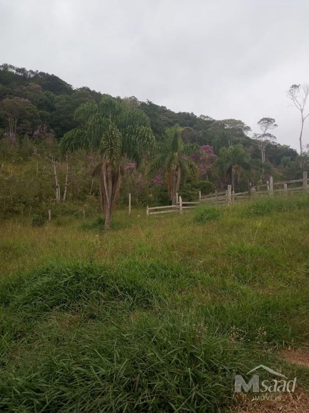 <strong>Chácara à venda em [bairro] cerrado grande</strong>
