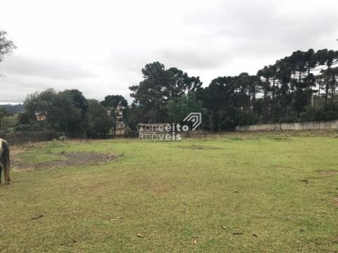 Terreno No Parque Shangrila