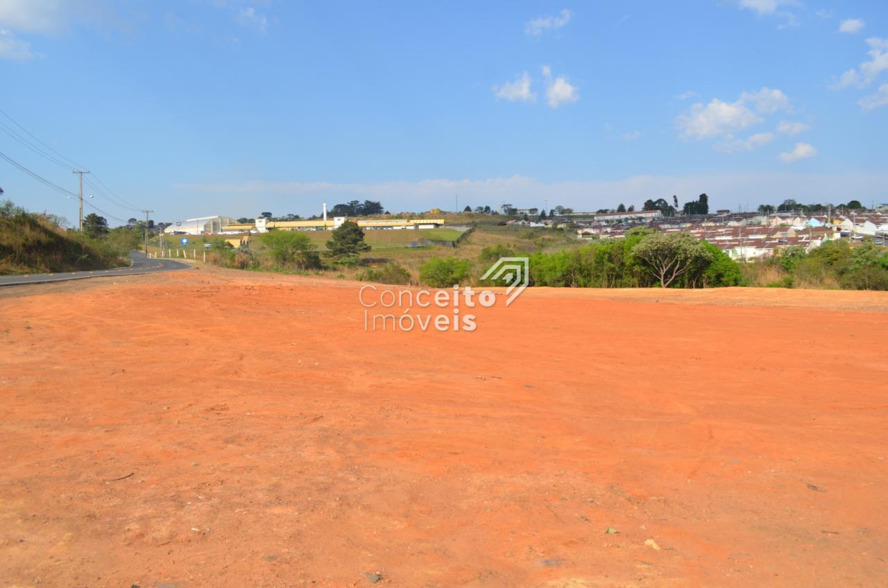 Terreno Urbano No Bairro Ronda