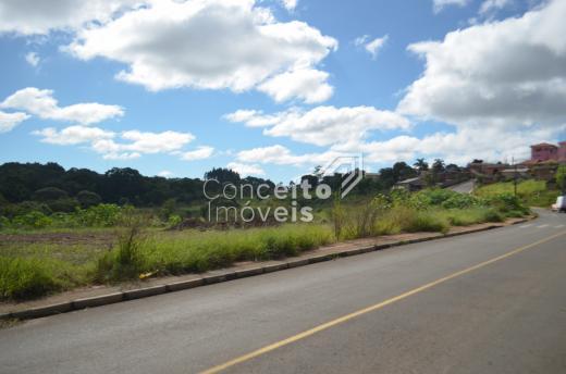 Foto Imóvel - Terreno Em Olarias