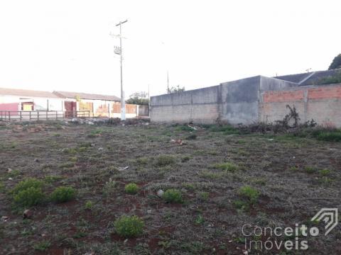Terreno No Parque Dos Pinheiros