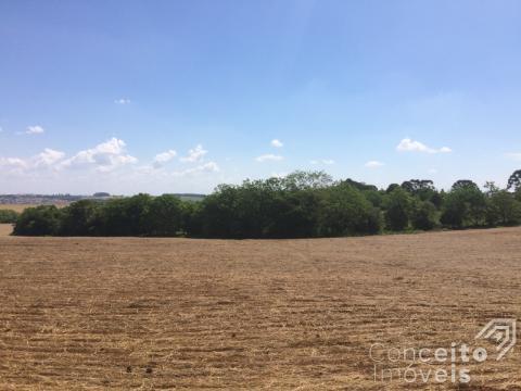 <strong>Área Rural próximo à Rodovia PR 151 em Ponta Grossa</strong>