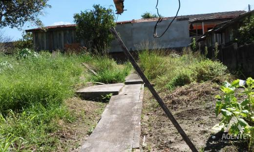 Terreno Palmeirinha