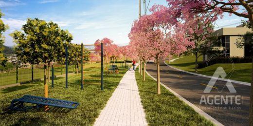 Lançamento Jardim Alpha - Alphaville Urbanismo Ponta Grossa
