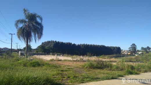 Terreno Comercial Siqueira Campos - Uvaranas